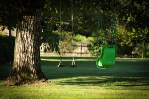 Swings and tree climbing